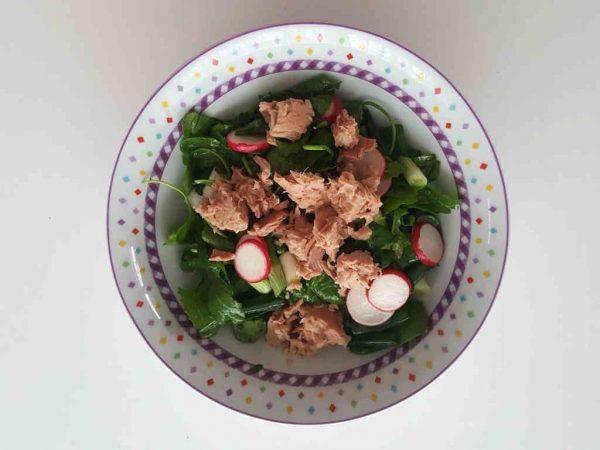 Šarena proljetna salata sa tunom